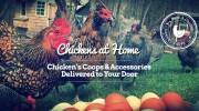 New Website: Rent A Chicken